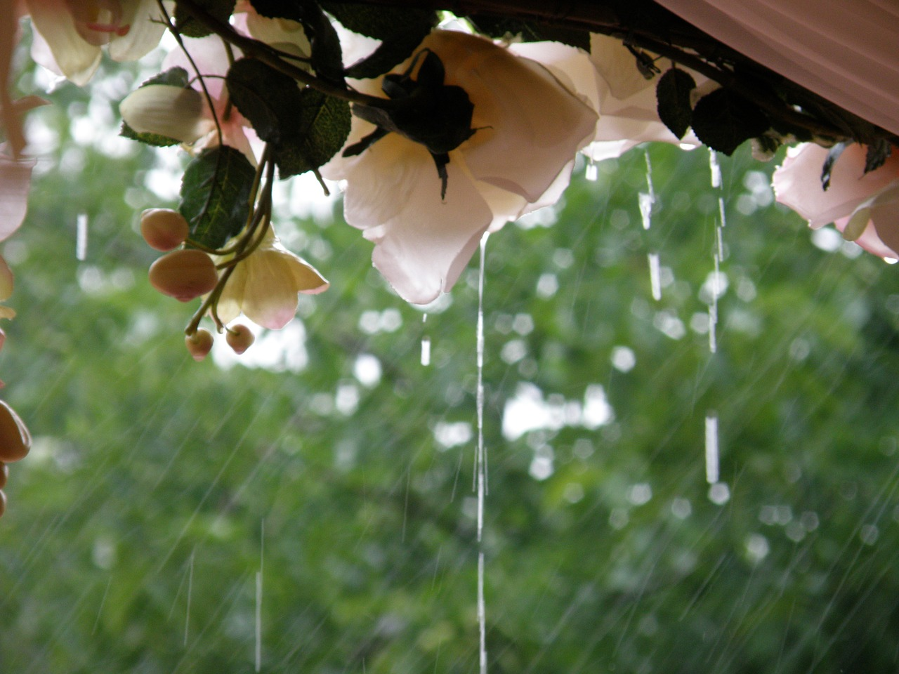 Handle Rain on Your Wedding Day with Style